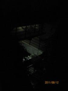 ashram-evening-photos-103